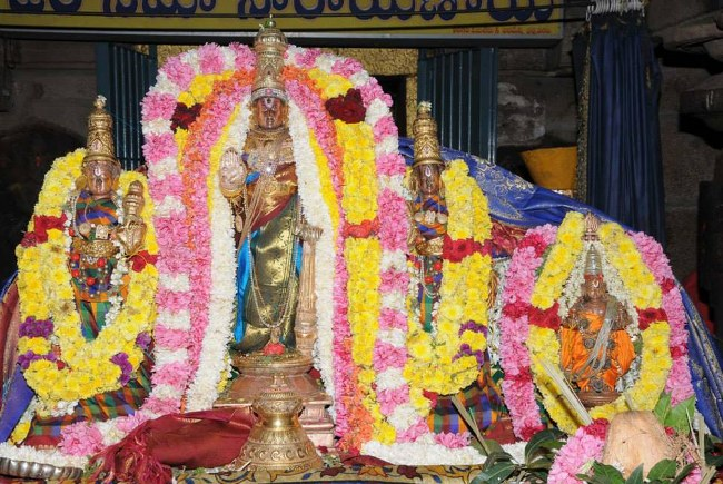 Swathi Sudharshana Homam at Lower ahobilam 2014 08