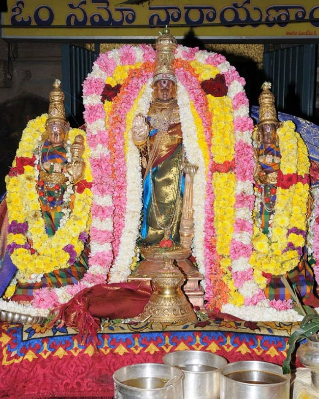 Swathi Sudharshana Homam at Lower ahobilam 2014 11