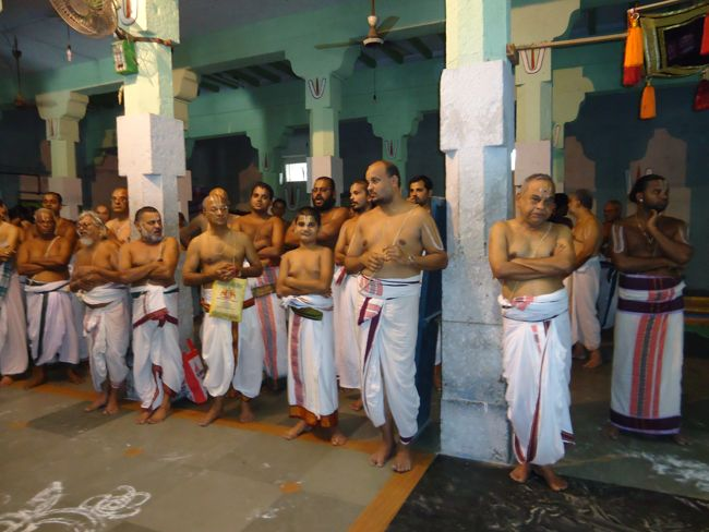 Thoopul Swami Desikan Utsavam Day 7 evening  2014 11