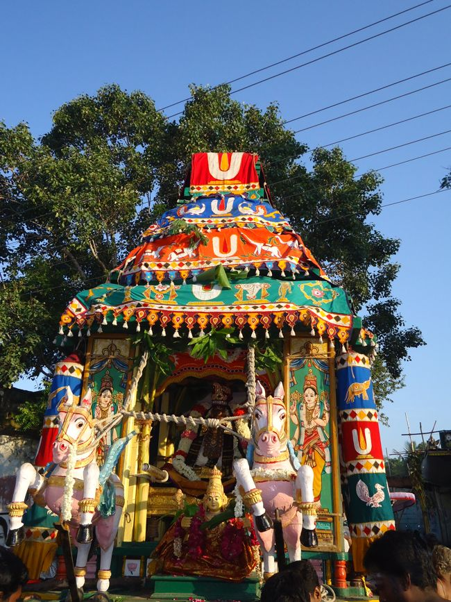 swami desikan thiruther 30 sep 14 7 to 10am(12)