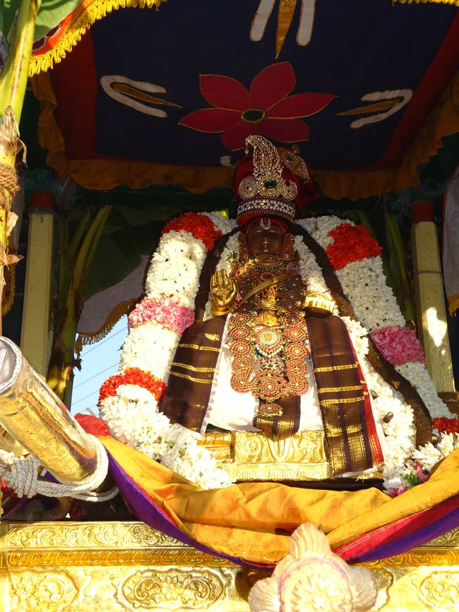swami desikan thiruther 30 sep 14 7 to 10am(20)