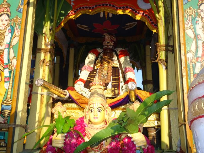 swami desikan thiruther 30 sep 14 7 to 10am(23)