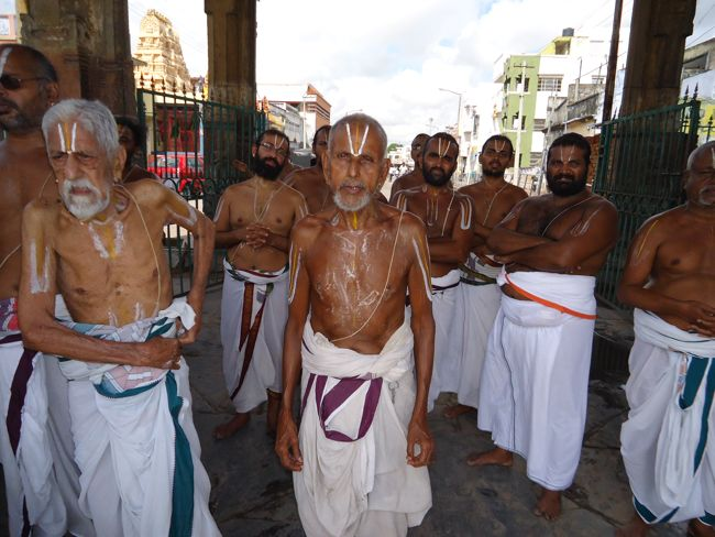 swami desikan thiruther 30 sep 14 7 to 10am(32)