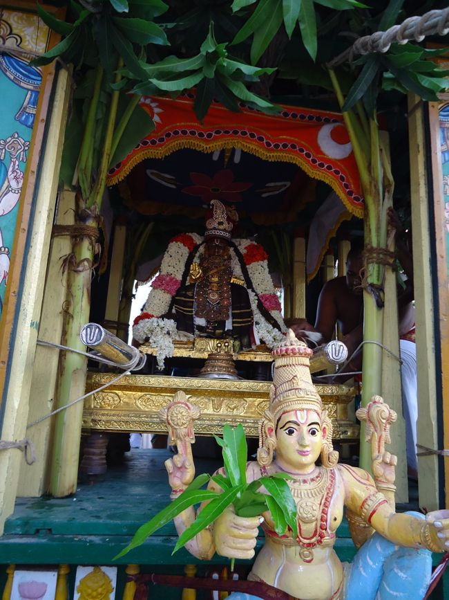 swami desikan thiruther 30 sep 14 7 to 10am(4)