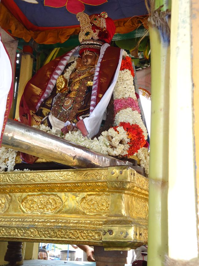 swami desikan thiruther 30 sep 14 7 to 10am(45)