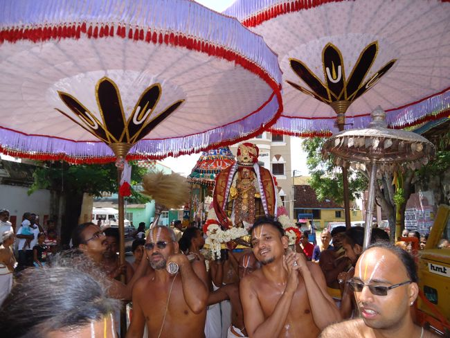 swami desikan thiruther 30 sep 14 7 to 10am(49)