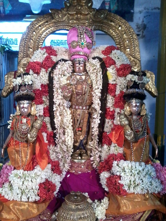 THiruvekka Poigai Azhwar Avatara utsavam day 10  evening Purappadu 03