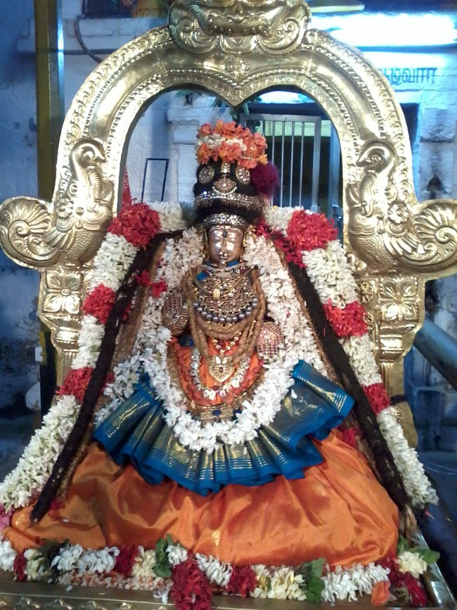 THiruvekka Poigai Azhwar Avatara utsavam day 10  evening Purappadu 04