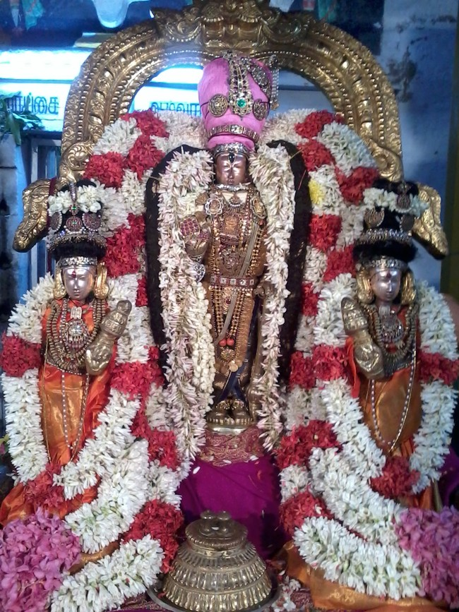 THiruvekka Poigai Azhwar Avatara utsavam day 10  evening Purappadu 05
