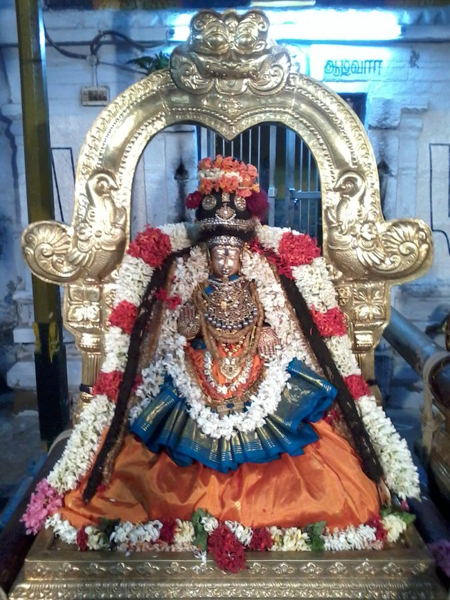 THiruvekka Poigai Azhwar Avatara utsavam day 10  evening Purappadu 08