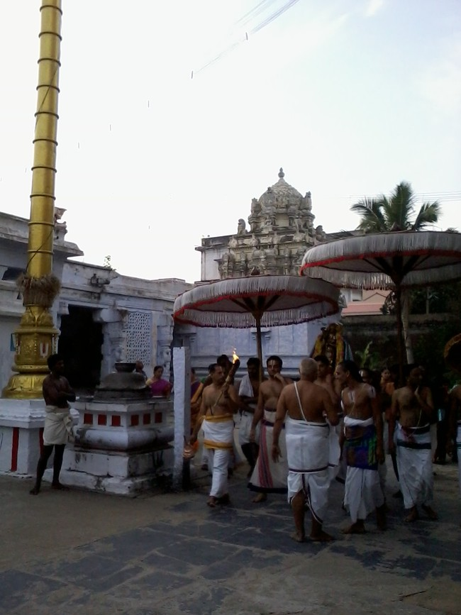 THiruvekka Poigai Azhwar Avatara utsavam day 10  morning thanga pallaku 06
