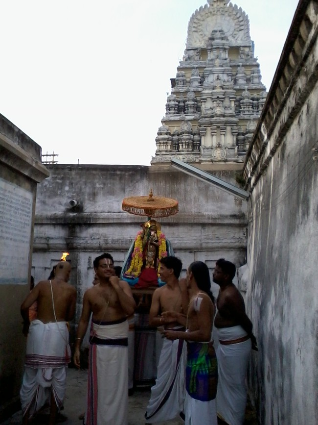 THiruvekka Poigai Azhwar Avatara utsavam day 10  morning thanga pallaku 07
