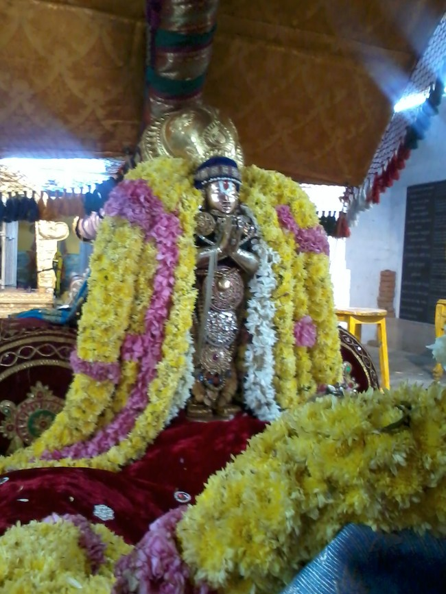 THiruvekka Poigai Azhwar Avatara utsavam day 10  morning thanga pallaku 09