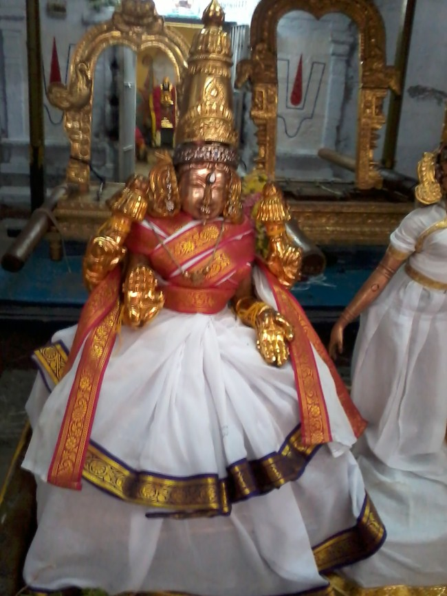 THiruvekka Poigai Azhwar Avatara utsavam day 10  morning thirumanjanam 02