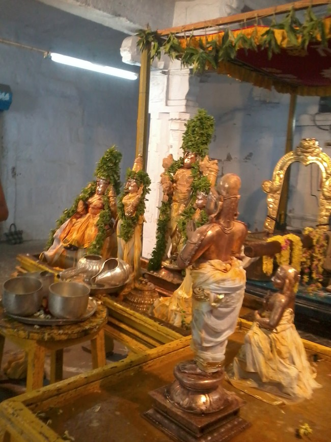THiruvekka Poigai Azhwar Avatara utsavam day 10  morning thirumanjanam 07