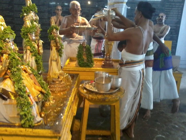 THiruvekka Poigai Azhwar Avatara utsavam day 10  morning thirumanjanam 11