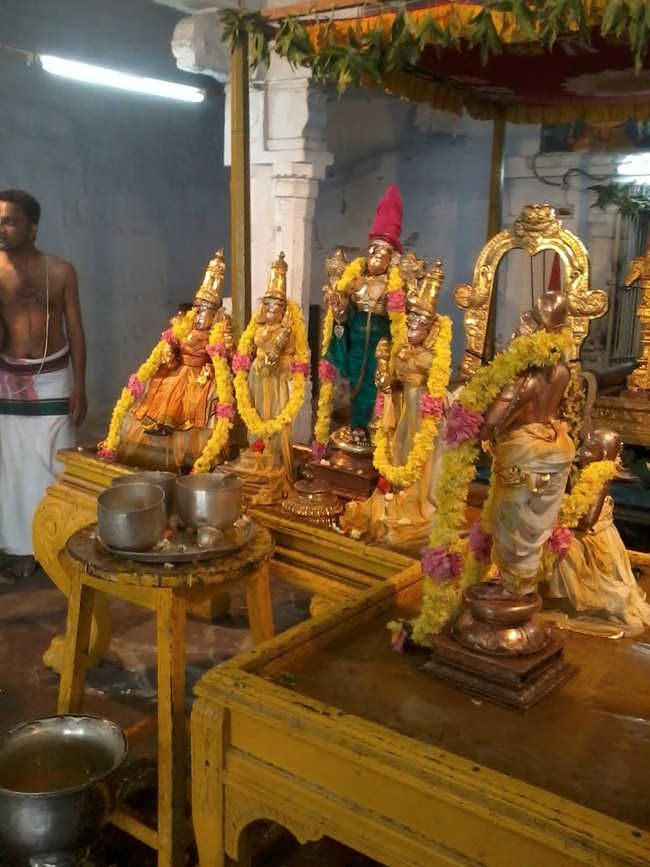 THiruvekka Poigai Azhwar Avatara utsavam day 10  morning thirumanjanam 14