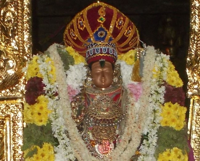 Therazhundur Sri Amaruviappan Pagal Pathu Utsavam Day 4 to 6 2014-06