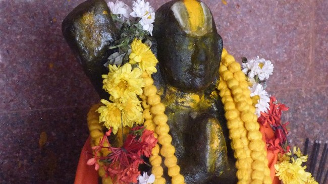 Thillaisthanam Swami 100 th year after sanyasa Thirumanjanam at brindavanam  -2014-21