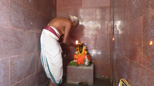 Thillaisthanam Swami 100 th year after sanyasa Thirumanjanam at brindavanam  -2014-29
