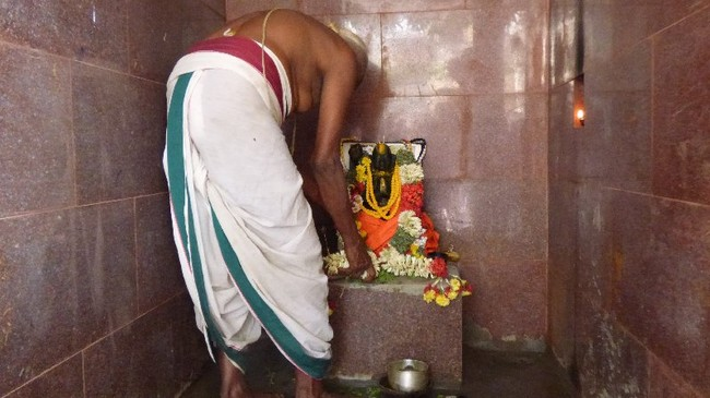 Thillaisthanam Swami 100 th year after sanyasa Thirumanjanam at brindavanam  -2014-34