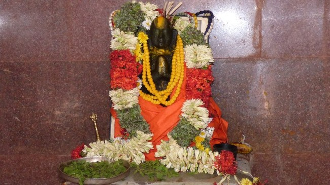 Thillaisthanam Swami 100 th year after sanyasa Thirumanjanam at brindavanam  -2014-35