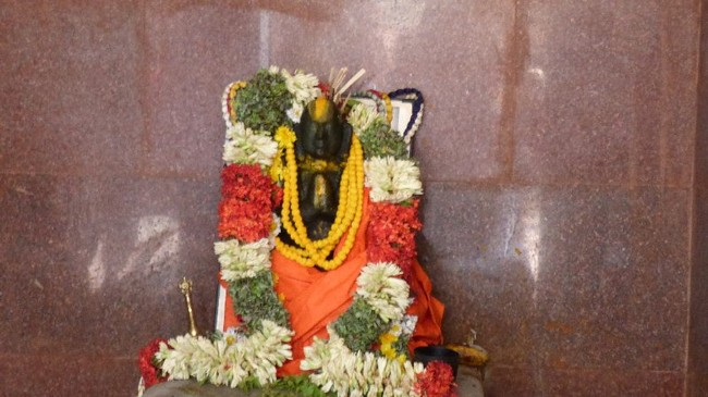Thillaisthanam Swami 100 th year after sanyasa Thirumanjanam at brindavanam  -2014-39