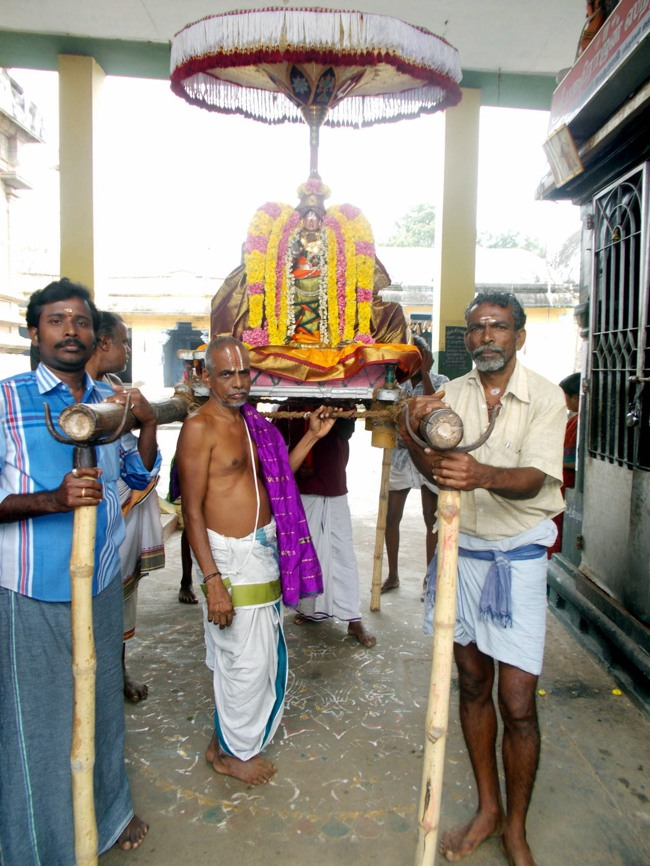 Thirukannamangai Sri Bhakthavatsala Perumal Pagal Pathu day 6-2014-03
