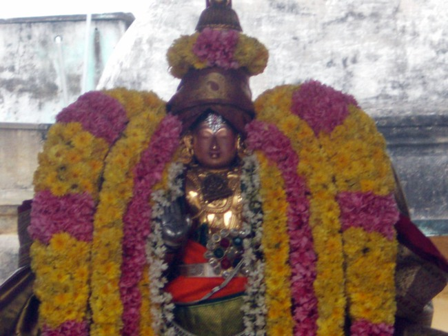 Thirukannamangai Sri Bhakthavatsala Perumal Pagal Pathu day 6-2014-05