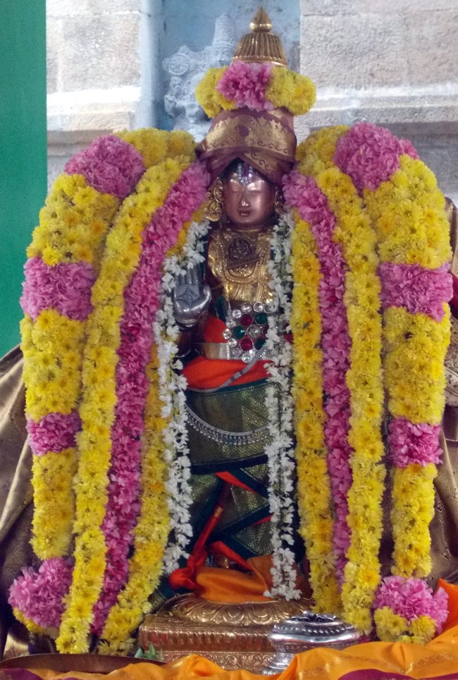 Thirukannamangai Sri Bhakthavatsala Perumal Pagal Pathu day 6-2014-11