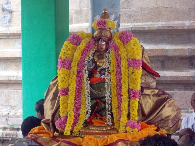 Thirukannamangai Sri Bhakthavatsala Perumal Pagal Pathu day 6-2014-13
