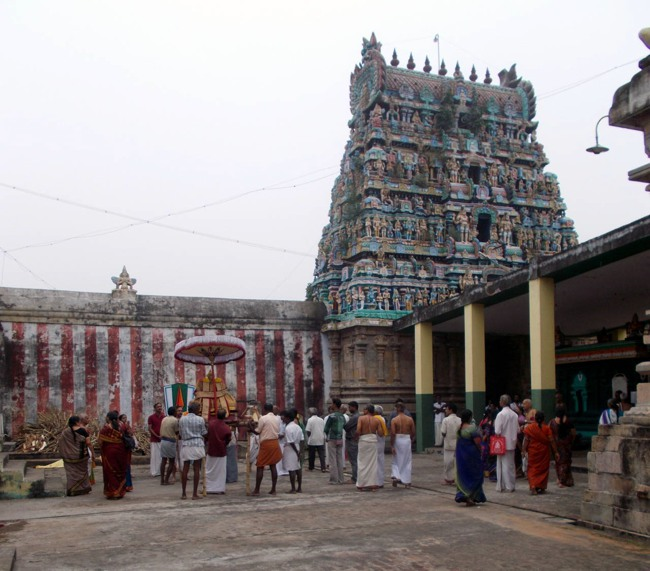 Thirukannamangai Sri Bhakthavatsala Perumal Pagal Pathu day 6-2014-15