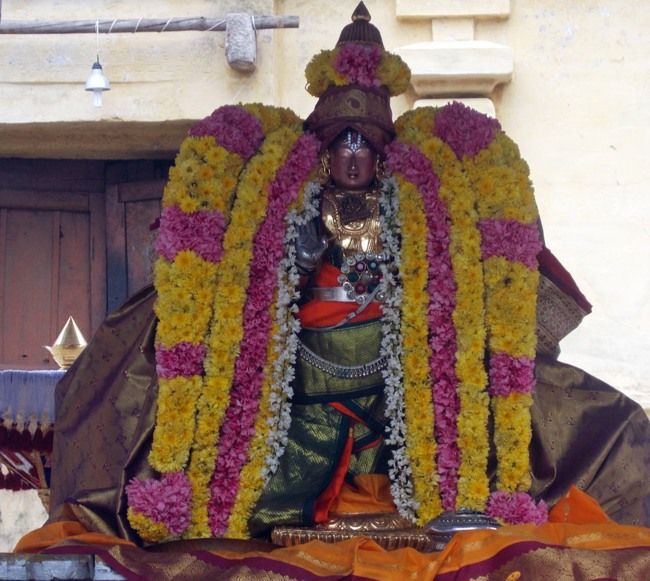 Thirukannamangai Sri Bhakthavatsala Perumal Pagal Pathu day 6-2014-19