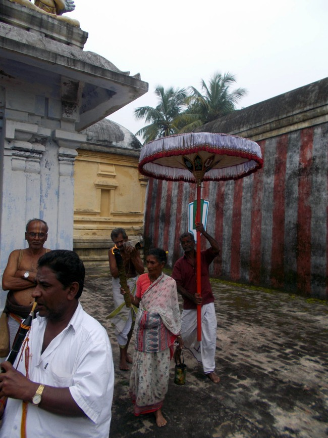 Thirukannamangai Sri Bhakthavatsala Perumal Pagal Pathu day 6-2014-22
