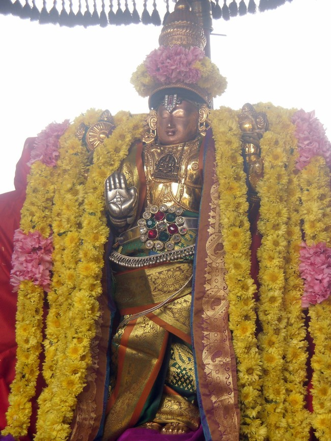 Thirukannamangai Sri Bhakthavatsala Perumal Temple Pagal Pathu Day 4-2014-06