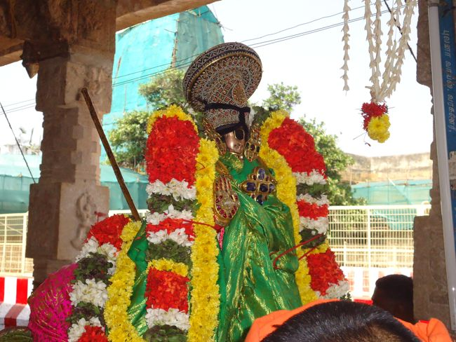 10th jan 15 - raapathu theerthavaari (28)