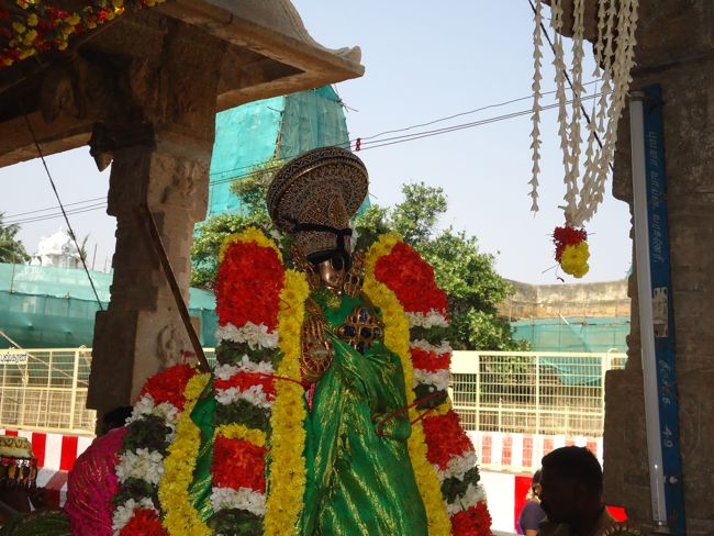 10th jan 15 - raapathu theerthavaari (29)