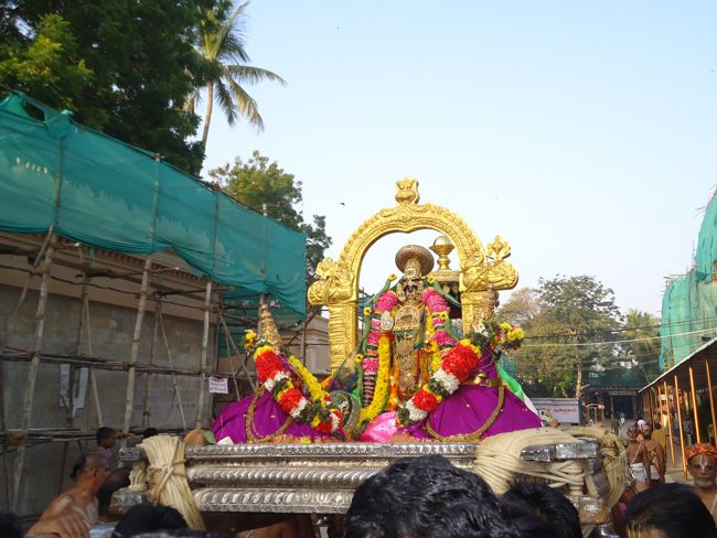 15th jan 15 7 to 8am pongal utsavam (33)