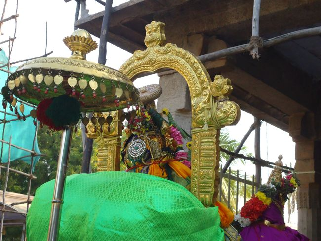 15th jan 15 7 to 8am pongal utsavam (41)