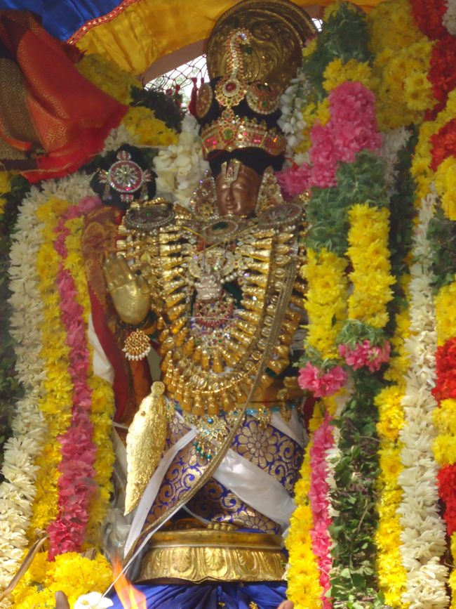 20, 21ST JAN 15 - THIRUNANGUR 11 GARUDASEVAI (158)