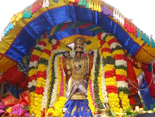 20, 21ST JAN 15 - THIRUNANGUR 11 GARUDASEVAI (168)