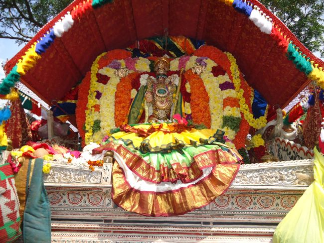 20, 21ST JAN 15 - THIRUNANGUR 11 GARUDASEVAI (169)