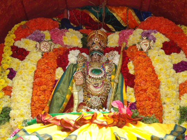 20, 21ST JAN 15 - THIRUNANGUR 11 GARUDASEVAI (170)