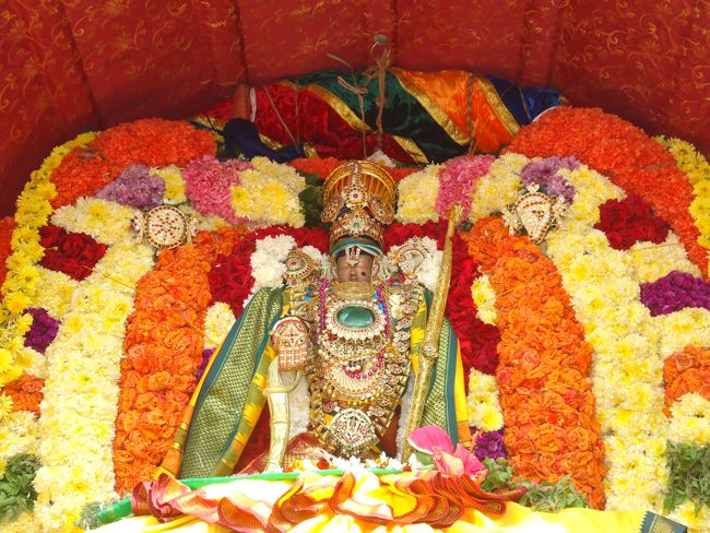 20, 21ST JAN 15 - THIRUNANGUR 11 GARUDASEVAI (171)