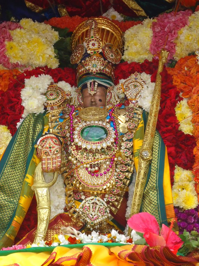 20, 21ST JAN 15 - THIRUNANGUR 11 GARUDASEVAI (172)