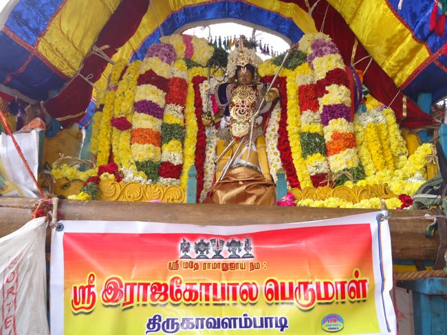 20, 21ST JAN 15 - THIRUNANGUR 11 GARUDASEVAI (185)