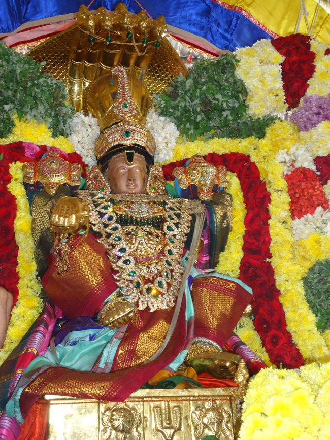 20, 21ST JAN 15 - THIRUNANGUR 11 GARUDASEVAI (191)