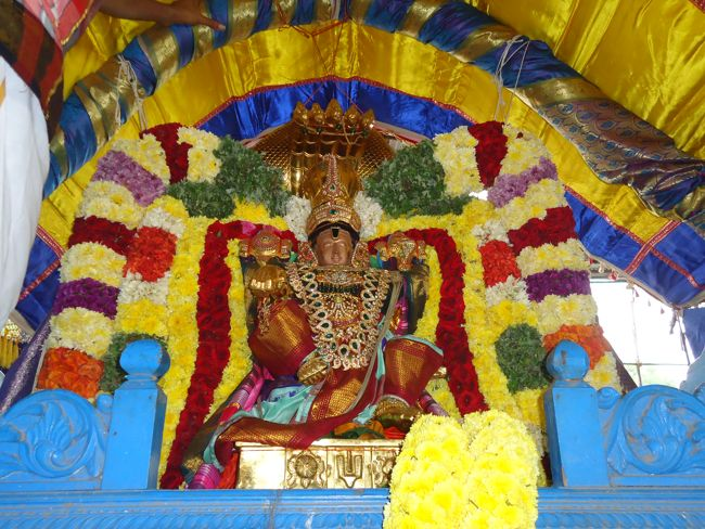 20, 21ST JAN 15 - THIRUNANGUR 11 GARUDASEVAI (192)