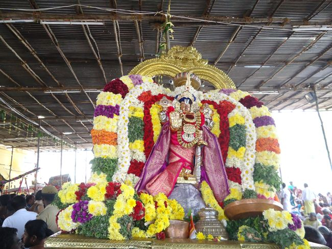 20, 21ST JAN 15 - THIRUNANGUR 11 GARUDASEVAI (198)