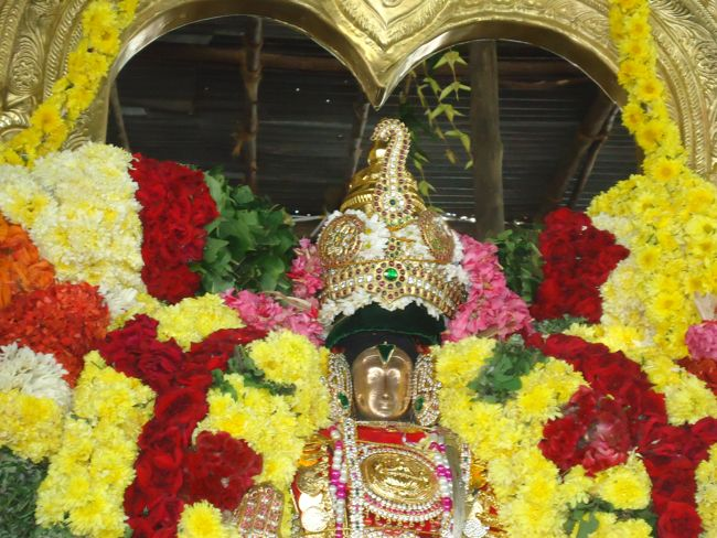 20, 21ST JAN 15 - THIRUNANGUR 11 GARUDASEVAI (205)